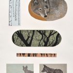 Canis lupus, sérigraphie, chine-collé, 76 x 56 cm