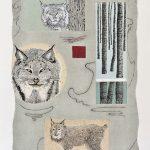 Lynx canadensis, collagraphie, chine-collé, sérigraphie 37,5 x 27,5 cm