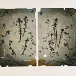 Herbes aériennes, collagraphie, 37,5 x 56 cm