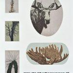 Alces alces, sérigraphie, chine-collé, 76 x 56 cm